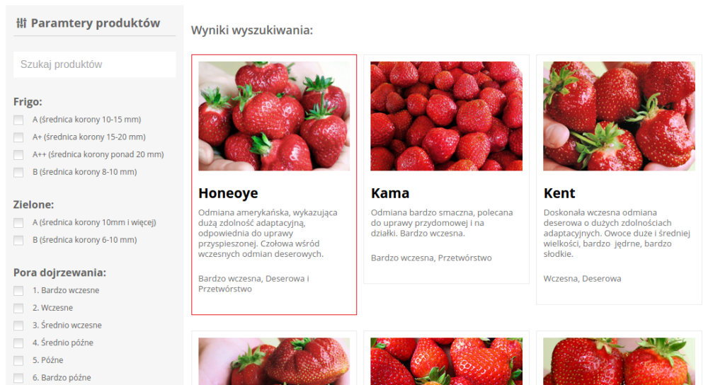 sadzoki-truskawek-uzytecznosc-blog-sasdesign